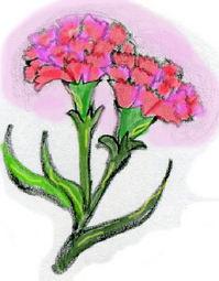 flower.jpgのサムネール画像